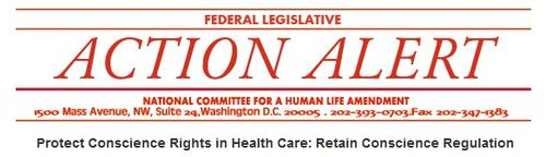 Nchla_action_center