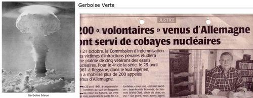 Gerboise_bleue_verte